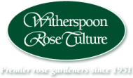 Witherspoon Rose Culture